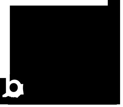 logo_denis_berkovich